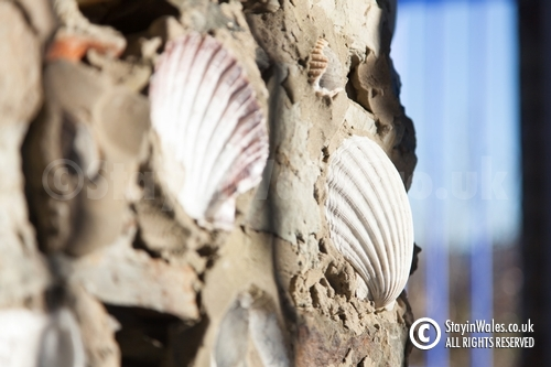 Portmeirion sea shells